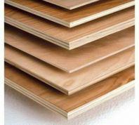 Plywood 12MM 4' * 8'