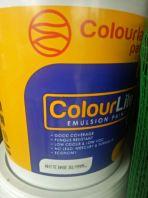 colourland Paint store