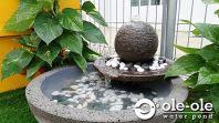 P61.Water Ponds Malaysia.Kolam Ikan.Hiasan.Johor.Fengshui.Garden.Koi fish.Landscape.��ˮ��.��.���