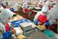 Good Manufacturing Practices for Food