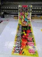 Solvent Inkjet Printing