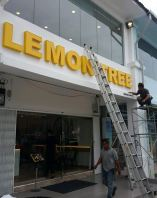 branding and franchise 3d lighter signboard  projects