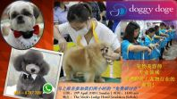 Pet Industry Seminar {Register Now}