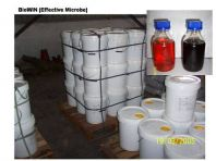 BioWin Effective Microbe
