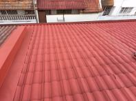 Residential Roofing Painting