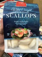Australia Far West Scallop 20/40 IQF