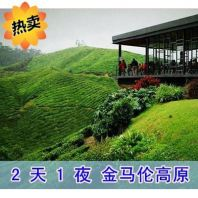 Malaysia: Kuala Lumpur to Cameron Tea Plantation Tour, Chinese Driver Tour Guide, KL Airport Chauffeur Service