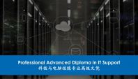 Professional Advanced Diploma in IT Support