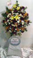 Funeral arrangment (FA-226)