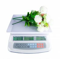 ELECTRONIC WEIGHING PRICE COMPUTING SCALE 30KG / 25 KG (8013)