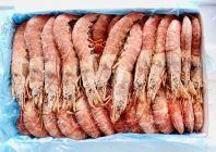 FA0002 Aka Ebi Hoso (Sashimi Grade) 阿根廷深海红虾 (刺身用)