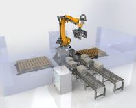 Automated Robotic System