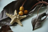 Yellow Starfish Necklace Fossil Wood Shell