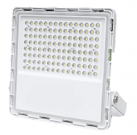 LED Flood Light 50W/100W