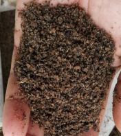 Insect Meal Ground Powder