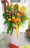 Congratulations 7 RM 250.00