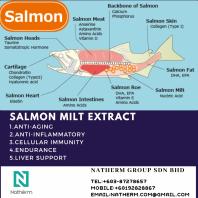 SALMON MILT EXTRACT