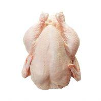 Spring Chicken ͯ�Ӽ� ��800g-900g +-��