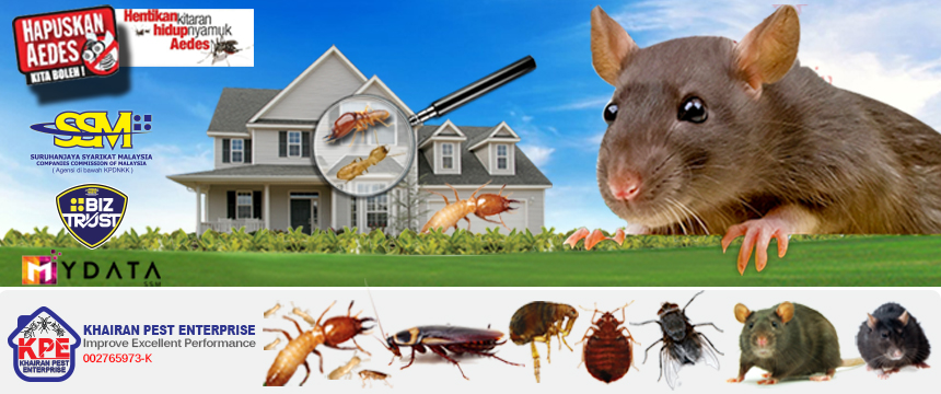 KHAIRAN PEST ENTERPRISE