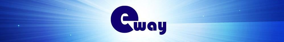 e Way Solutions Enterprise