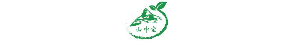 山中宝企业
