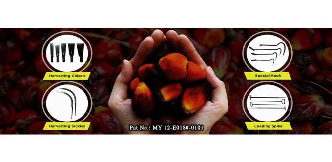 Palm King Marketing Sdn Bhd